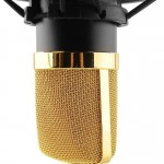 BM700 microphone grill